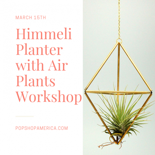 himmeli planter with air plants montrose houston workshop