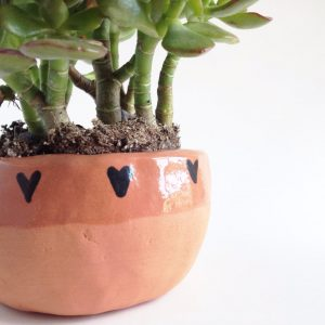 Terra Cotta Planter with Hearts | Terrarium Containers