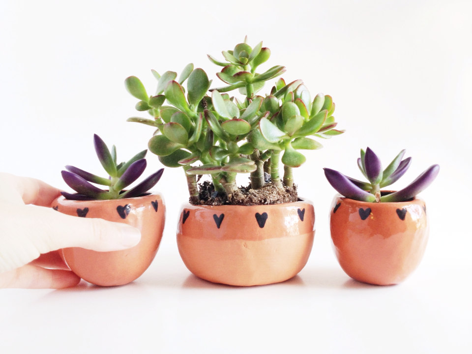 Terra Cotta Planter with Hearts 3 | Terrarium Containers
