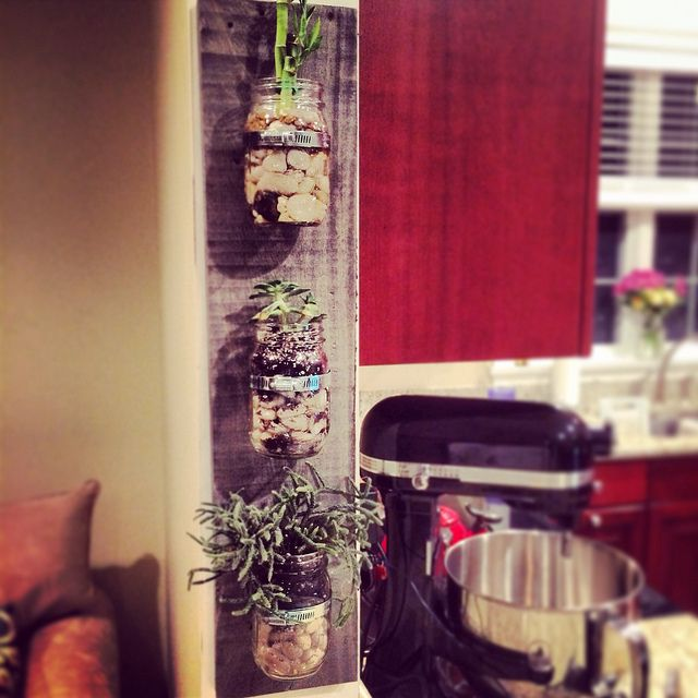 Wall Mounted Mason Jar Planters   DIY's for Father's Day   Father Day Gift Ideas