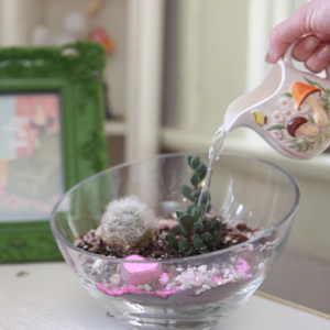 Still from the How to Make a Succulent Terrarium Video by Pop Shop America   How to Build a Terrarium Instruction on the Pop Shop America Craft Blog