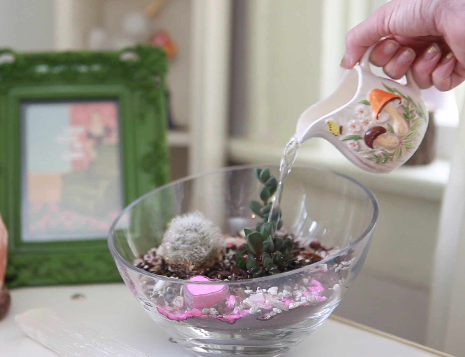 How To Make A Terrarium With Cacti And Succulents