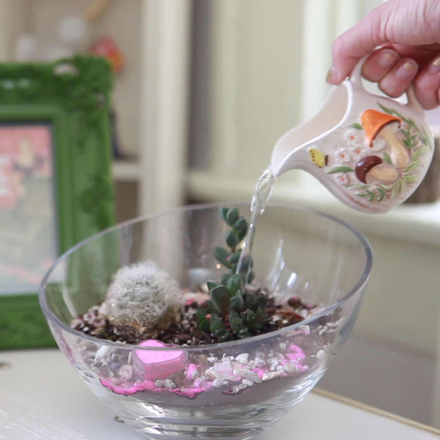Water Succulent Terrariums Once Every Few Weeks How To Care For Succulent Terrariums Pop Shop America Hosts Terrarium Workshops Custom Makes Terrariums And Hosts Art Events In Houston Pop Shop America