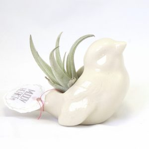 Eggshell Bird Planter – Tiny Ceramics for Air Plants – Made in the USA