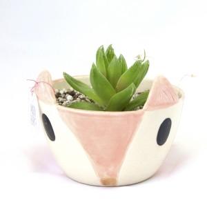 fox planter with succulent ceramic succulent planters