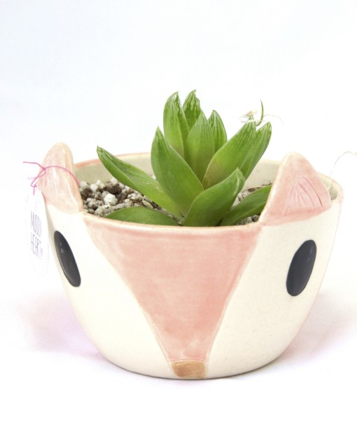 small succulent planters animal planters with fox face