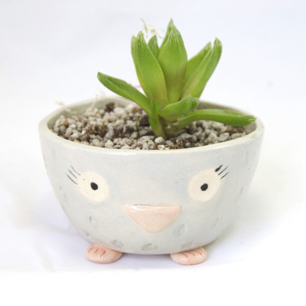 shop animal planters online at pop shop america owl pottery owl planter