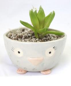 owl pottery handmade ceramics animal planters at pop shop america online shop