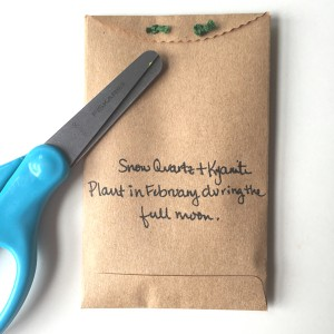 How to Make a Seed Pack perfect for Spring Wedding Gift Ideas Spring DIY's