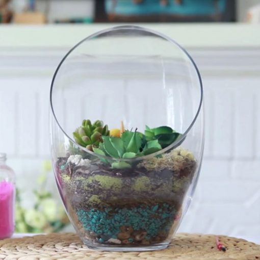 Large Terrarium with Cactus
