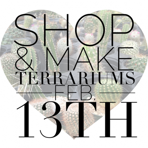 Valentine's terrarium bar feb 13th | Glass Terrariums & Succulent Terrariums