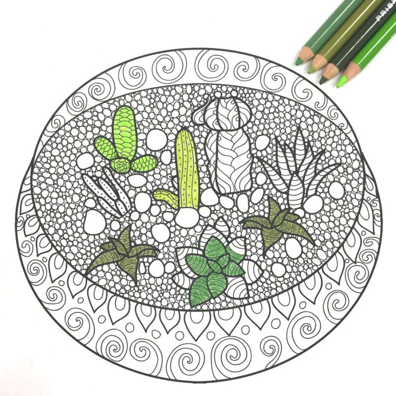 Free Adult Coloring Book Pages With Succulent Terrariums