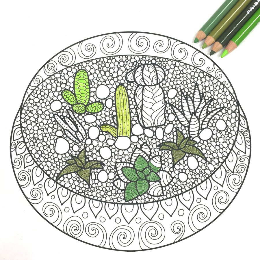 free adult coloring book pages with succulent terrariums - Free Adult Coloring Books