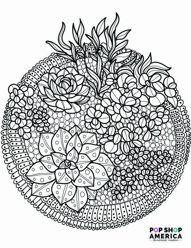 adult coloring book succulent terrarium free printables small for web