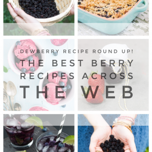 dewberry recipe round up the best berry recipes from pop shop america blog