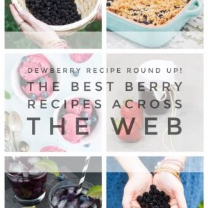 dewberry-recipe-round-up-the-best-berry-recipes-from-pop-shop-america-blog-683x1024