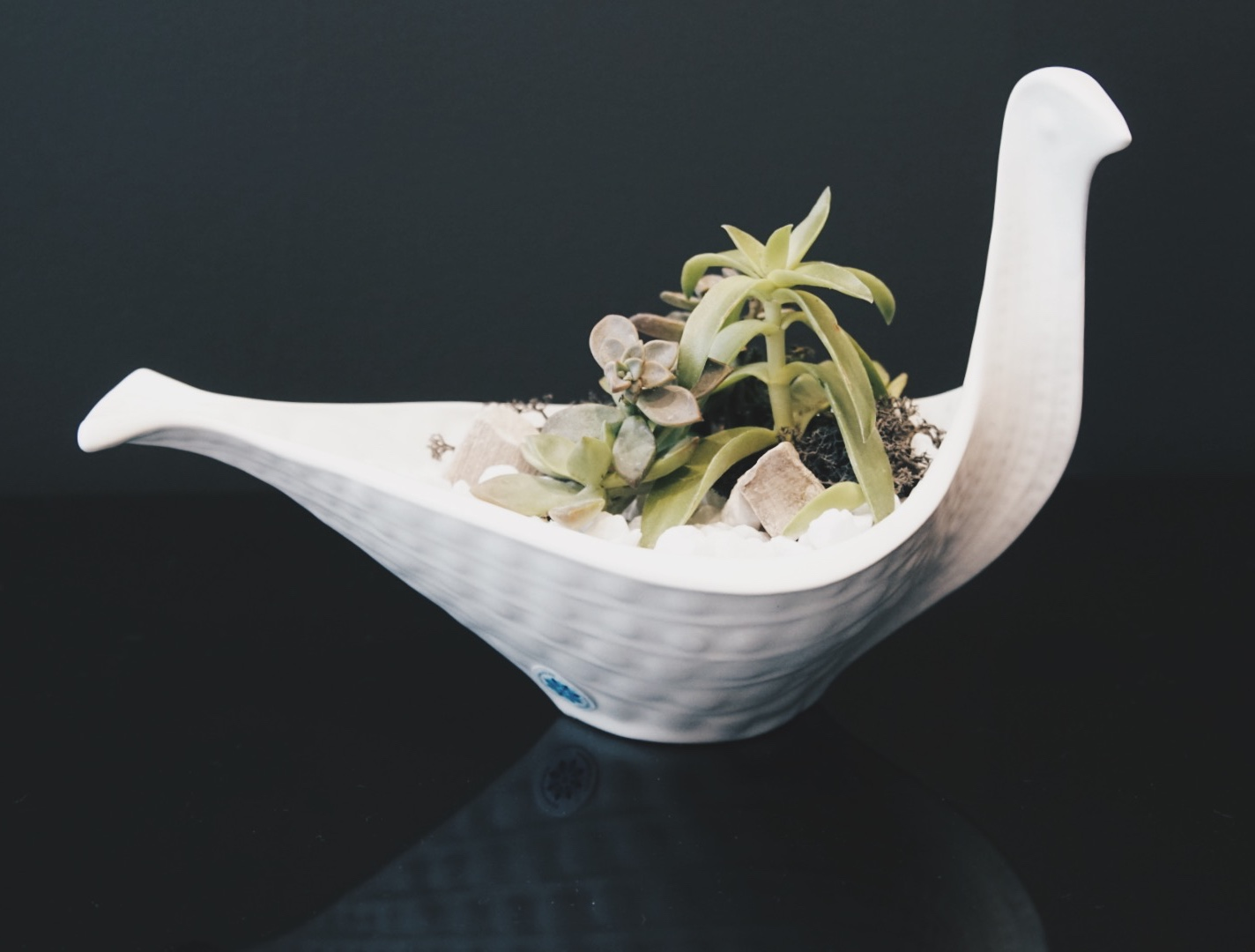 gorgeous finished terrarium with jonathan adler bird bowl succulents and plants houston