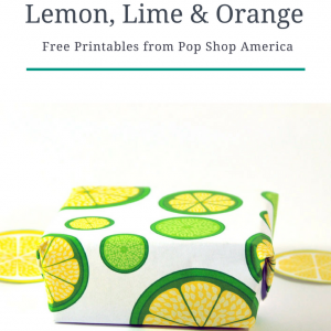 DIY lemon lime orange printables