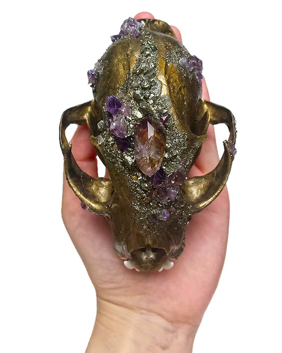 Kristin Jarvis Crystal Taxidermy Fairy Skull