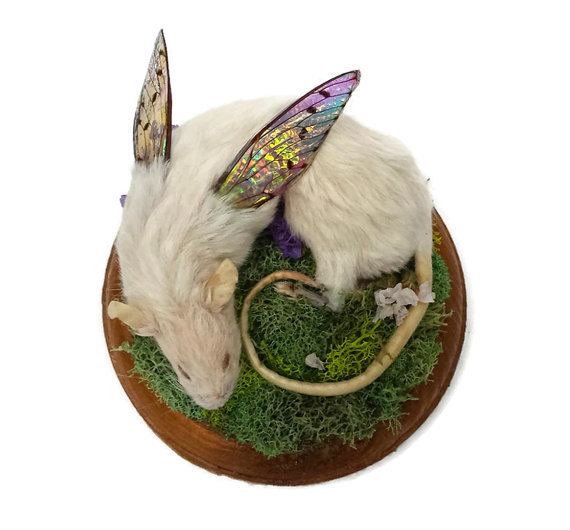 Kristin Jarvis Rat Fairy Taxidermy Art