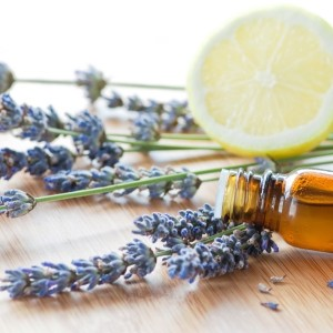 essential-oils diy beauty bar art class houston homepage
