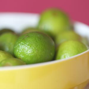 gorgeous-limes-mojito-key-lime-pie-recipe_small