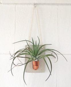 small-copper-and-concrete-hanging-planter