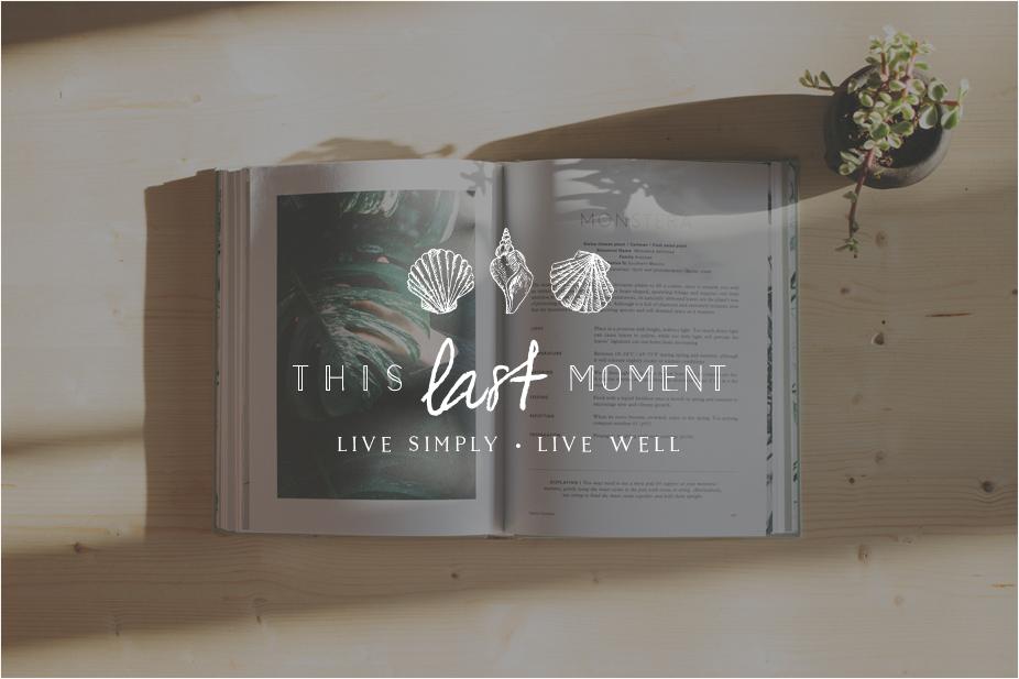 This-Last-Moment-Logo-Miel-Cafe-Design