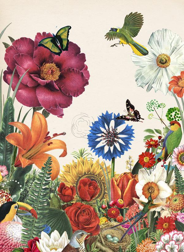 silent spring close up art print valero doval spain