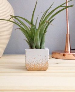 gold polka dot concrete planter