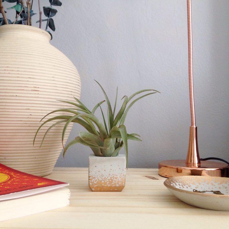 styled scene of mini concrete square planter