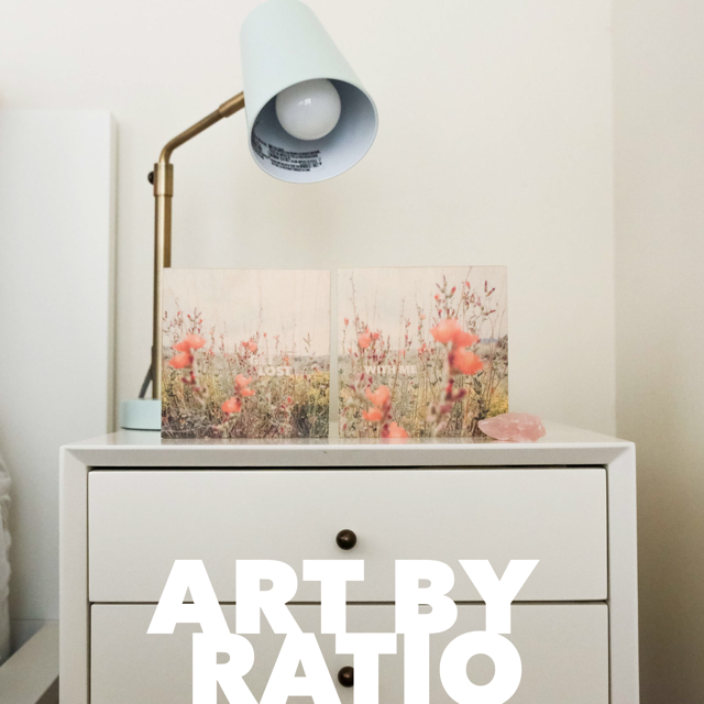 art by ratio at pop shop san antonio