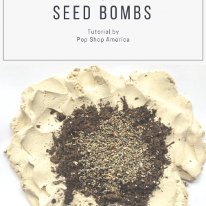 DIY Clay Seed Bombs by Pop Shop America