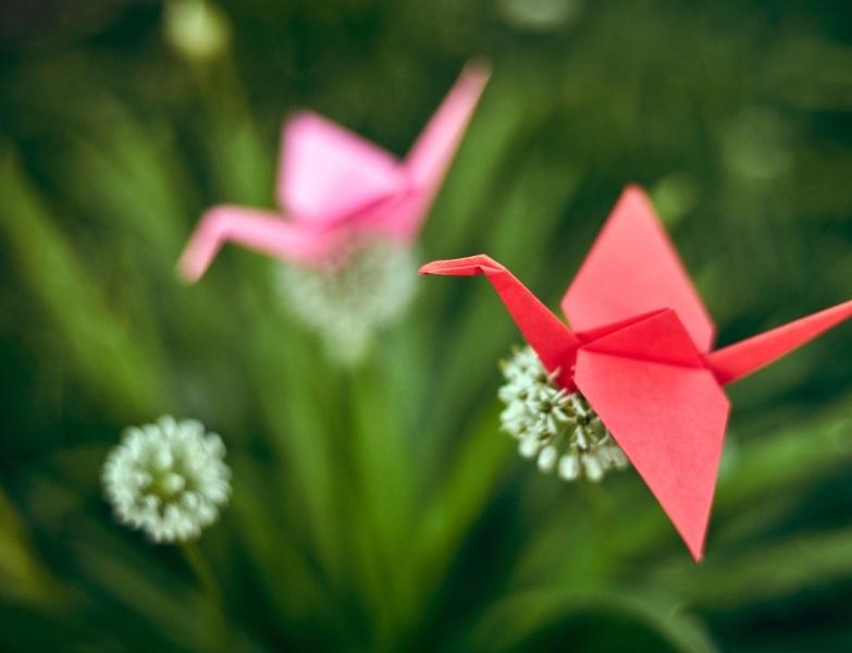 origami craft class_web_homepage