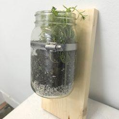 finished wood mounted mason jar terrarium planter pop shop america