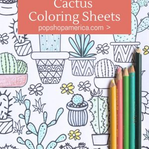 succulent and cactus coloring sheets pop shop america