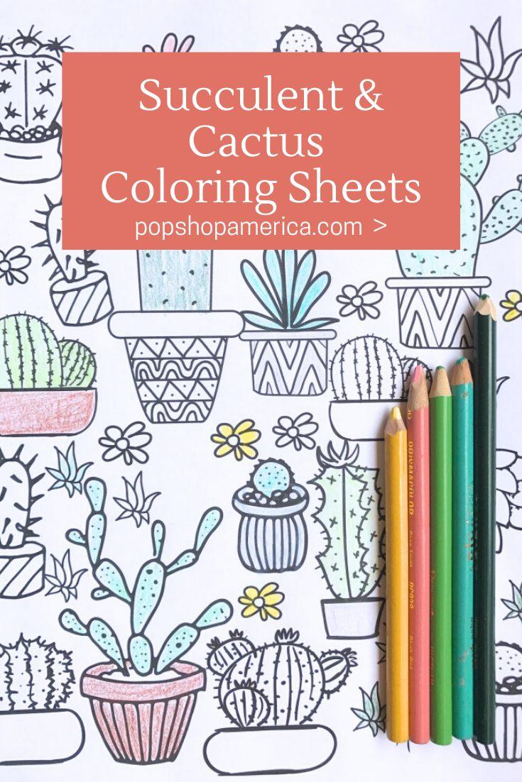 succulent and cactus coloring sheets pop shop america