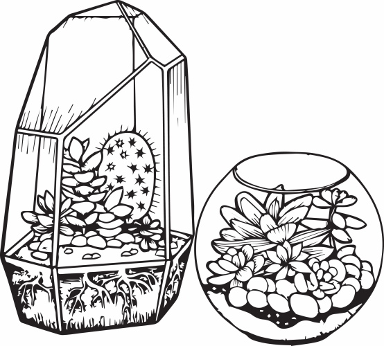 cactus images coloring pages - photo#28