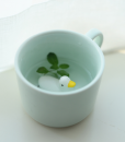 mint ceramic mug with duck cute home goods