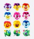rainbow flower washi tape craft supplies_web