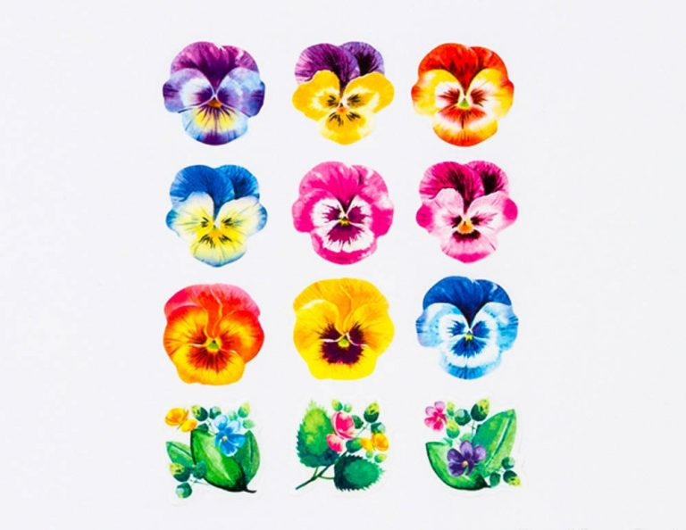 rainbow flower washi tape bande on a roll_web