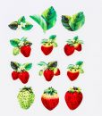 strawberry washi tape by bande made in japan_web