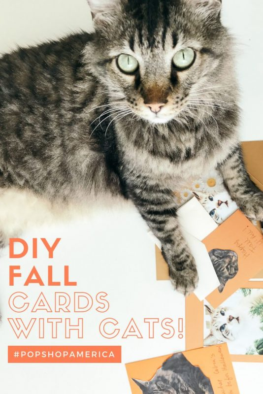 diy fall cards with your cats