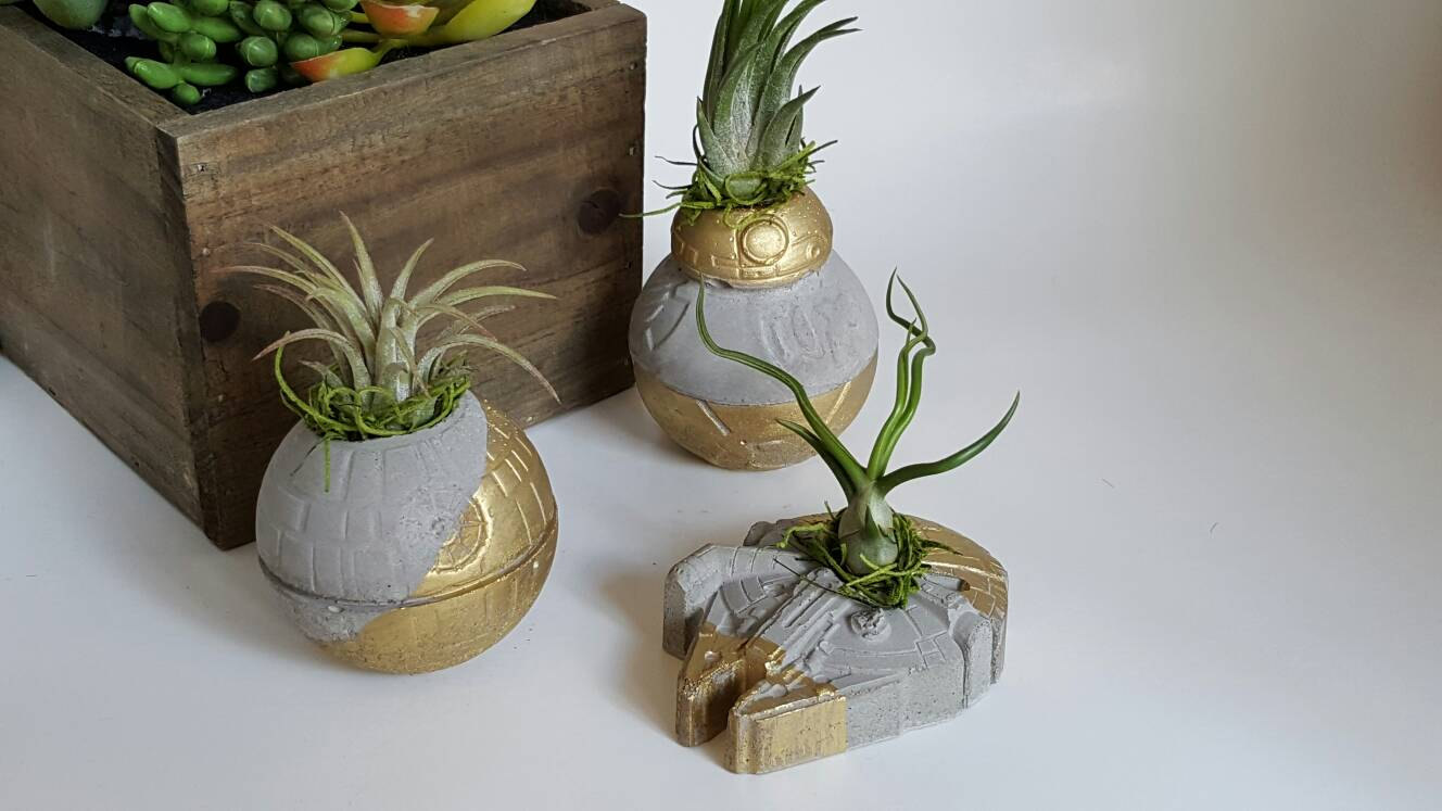 micro terra star wars concrete planters pop shop san antonio craft fair