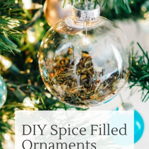 diy spice filled ornaments pop shop america