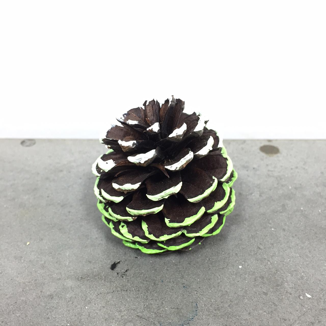 pine cone gallery | craftgawker