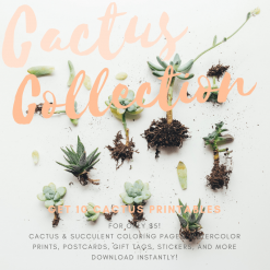cactus collection printables pop shop america