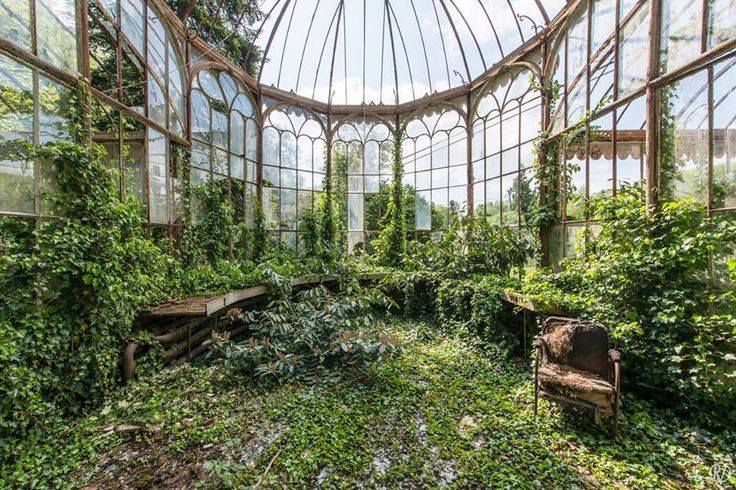 abandoned greenhouse garden with overgrown plants