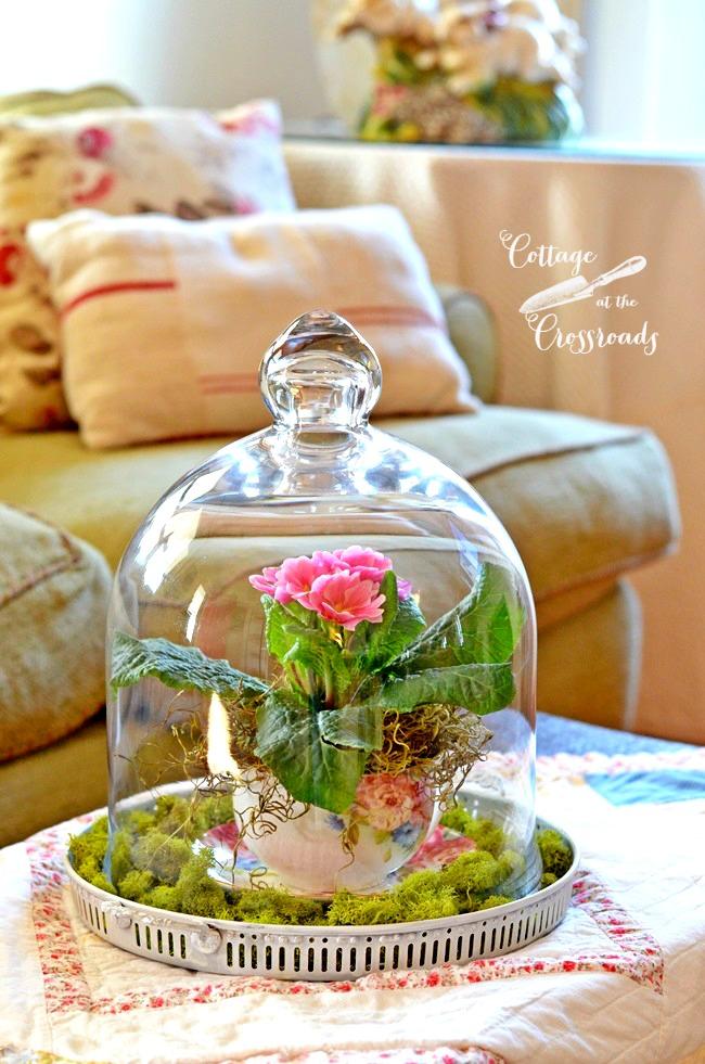 Spring-under-glass-teacup-planter