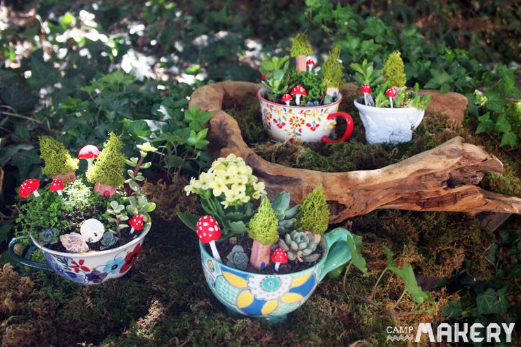 Teacup-Garden-miniature-indoor-plants